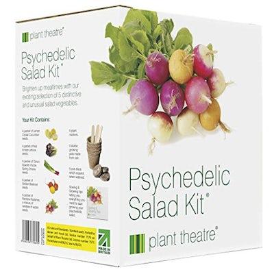5 fantastische Salatsorten zum Züchten – Kit Psychedelischer Salat von Plant Theatre