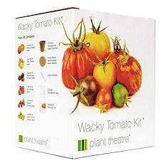 Plant Theatre Kit Wacky Tomatoes - 6 fantastischen Sorten zum Anbauen